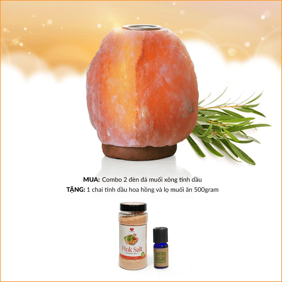 MUA 2 đèn đá muối xông tinh dầu TẶNG NGAY 1 chai tinh dầu hoa hồng và hộp muối ăn 500gr